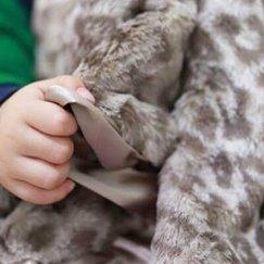 Max Daniel動物紋寶寶毯子銀色美洲豹示意圖