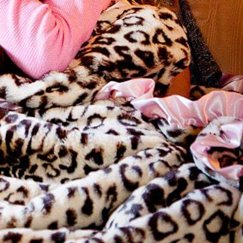 Max Daniel動物紋粉邊美洲豹寶寶毯子示意圖