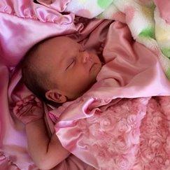 Max Daniel花蕾珊瑚粉安撫巾是寶寶成長的最佳伴侶